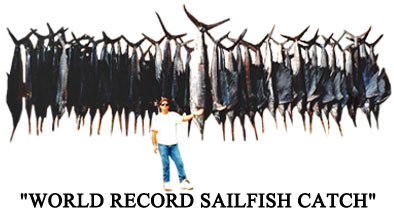 Record Sailfish Catch Mark the Shark