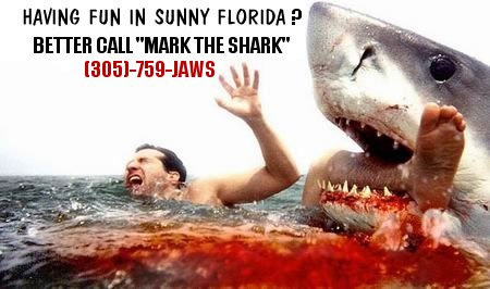 Shark fishing charters - Miami beach